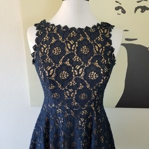 Classic Navy Blue Lace Overlay Dress 5 (NWOT)